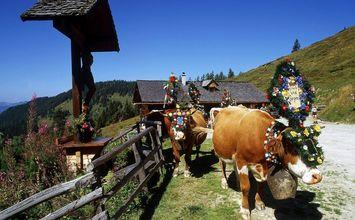 Schönsten Wandertouren im Salzburger Land